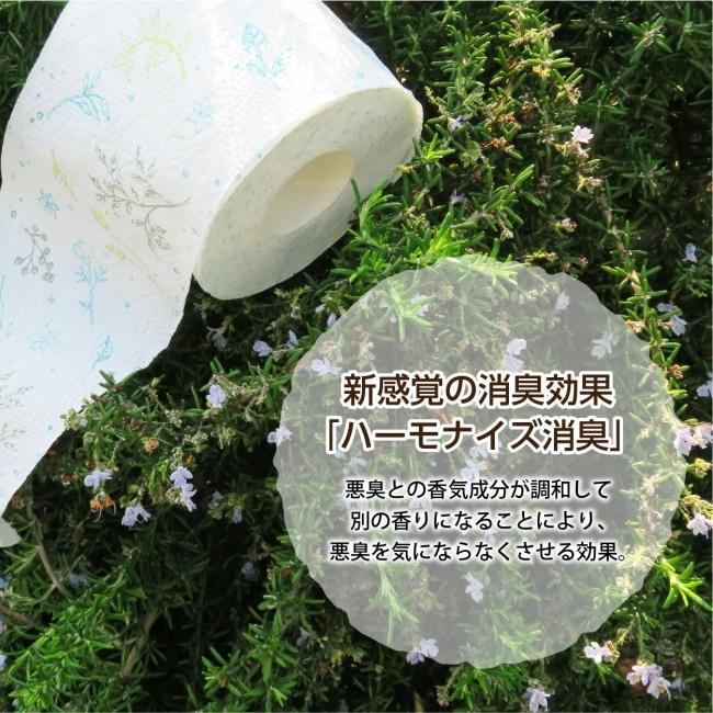 地域限定☆送料無料 トイレットペーパー ボタニカル シャワートイレ用 ダブル 72ロール(12ロール×6パック)ジャスミンの香り 丸富製紙 2865 green-consumer-shop 04