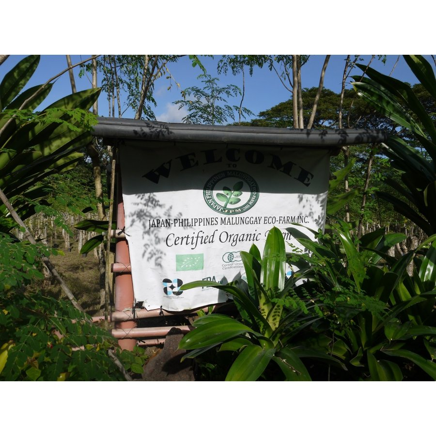無農薬・無化学肥料のモリンガ葉100%使用・有機JAS認証(オーガニック)モリンガ茶・焙煎玄米入り(6.5g×12ティーバック)|green-moringa|05