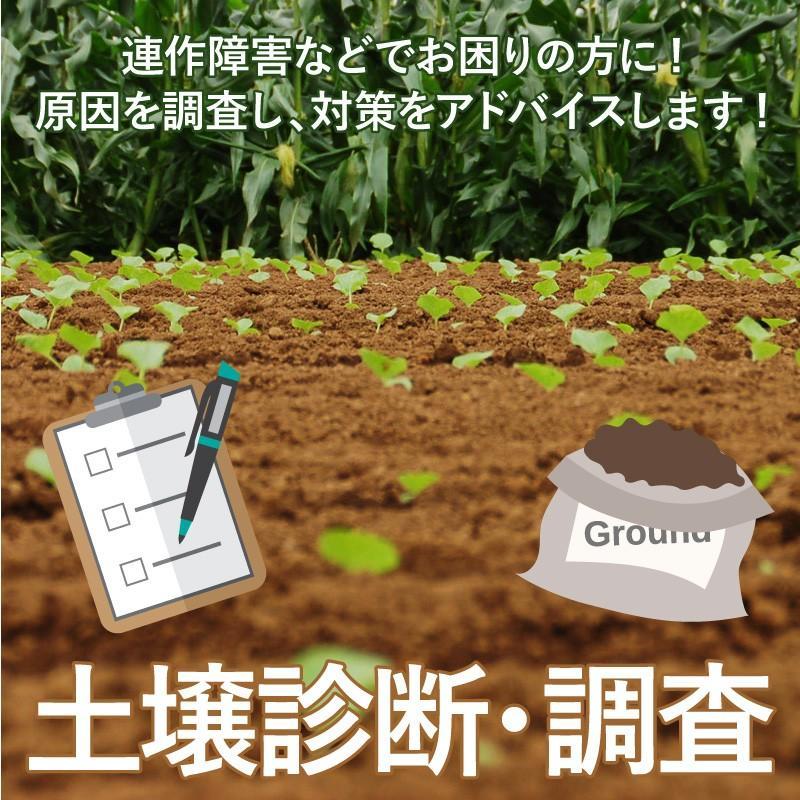 土壌診断・土壌分析・調査 greenfront