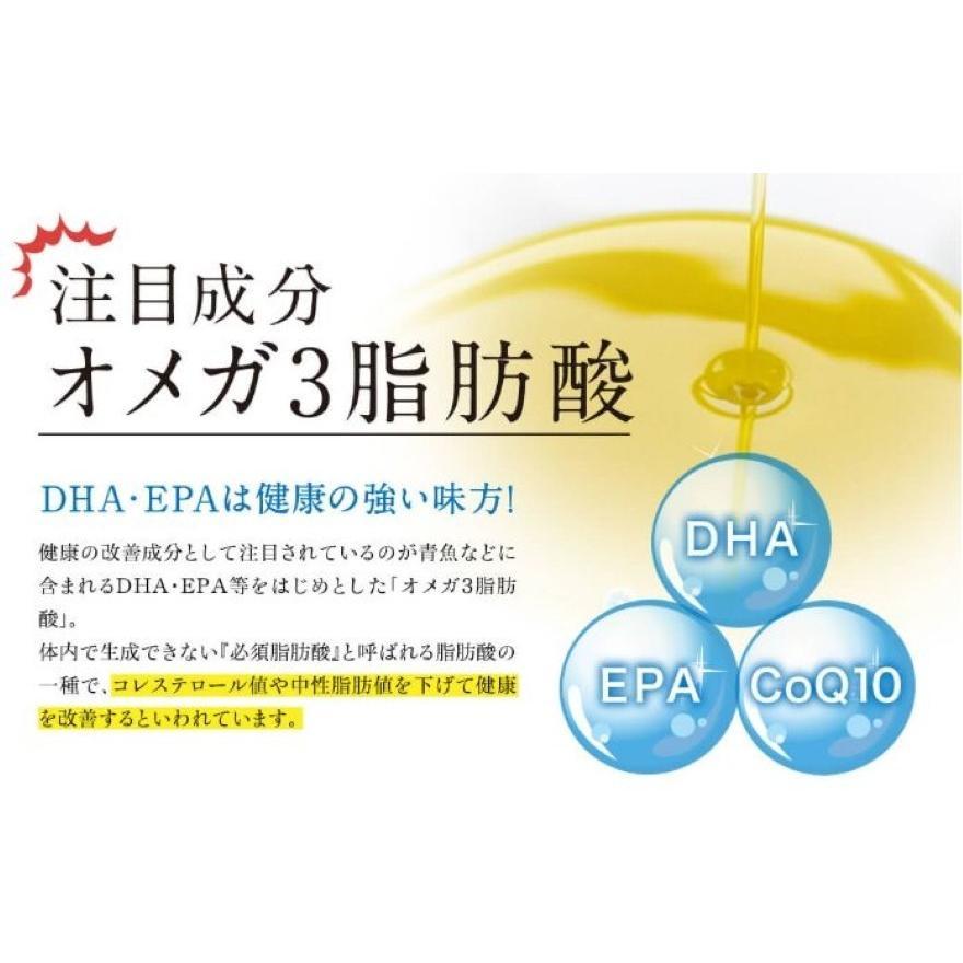 DHA EPA サプリメント まるごと青魚 1袋 オメガ3脂肪酸 DHA&EPA 青魚 非加熱 無添加 オイル 効果|greenhouse|03