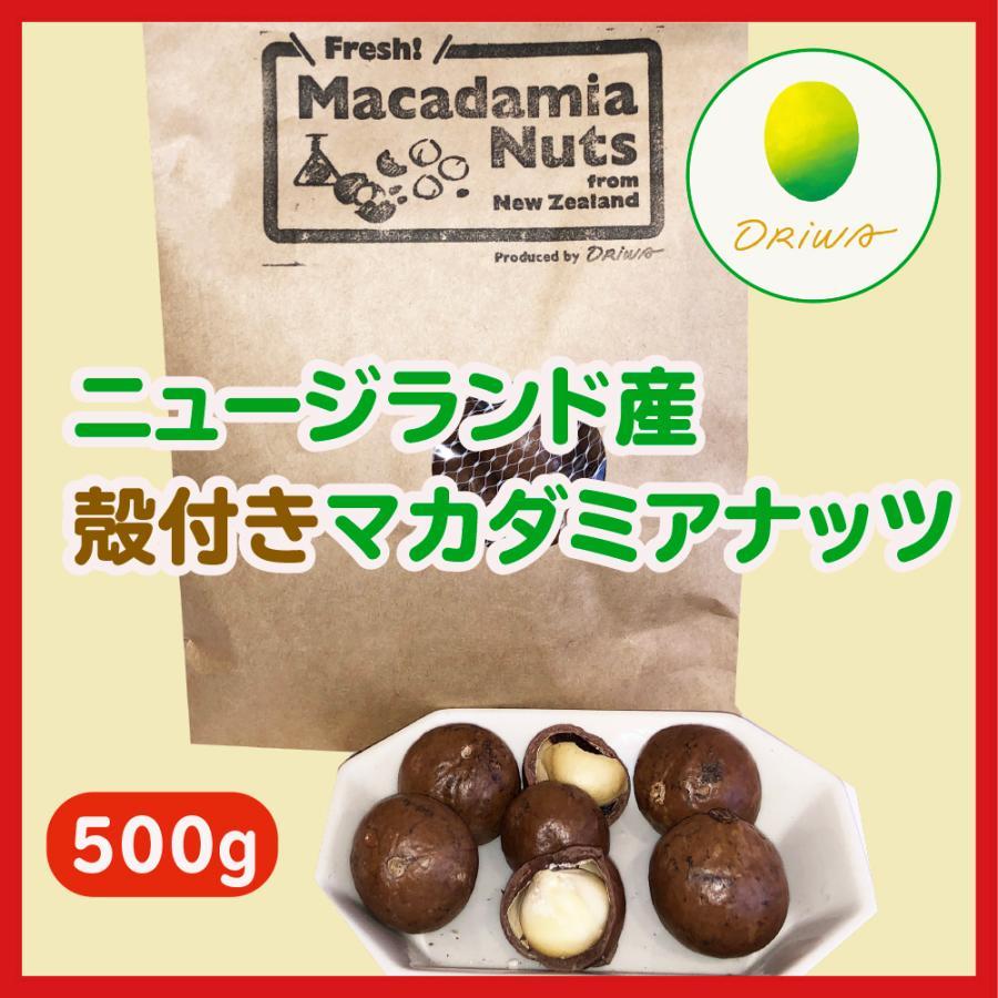殻付きマカダミアナッツ(フレッシュ)500g ニュージーランド産「生」ノンロースト 無塩 greenpasture-japan