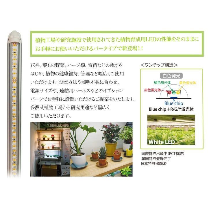 【送料込み】 植物育成用LEDライト プラントマグネット棚バー 55cm ACアダプター DCコード 3点セット 植物 育成 LED ライト 10149415・10149496・10149497|greenplants|04