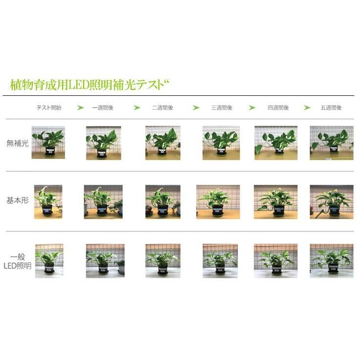 【送料込み】 植物育成用LEDライト プラントマグネット棚バー 55cm ACアダプター DCコード 3点セット 植物 育成 LED ライト 10149415・10149496・10149497|greenplants|08