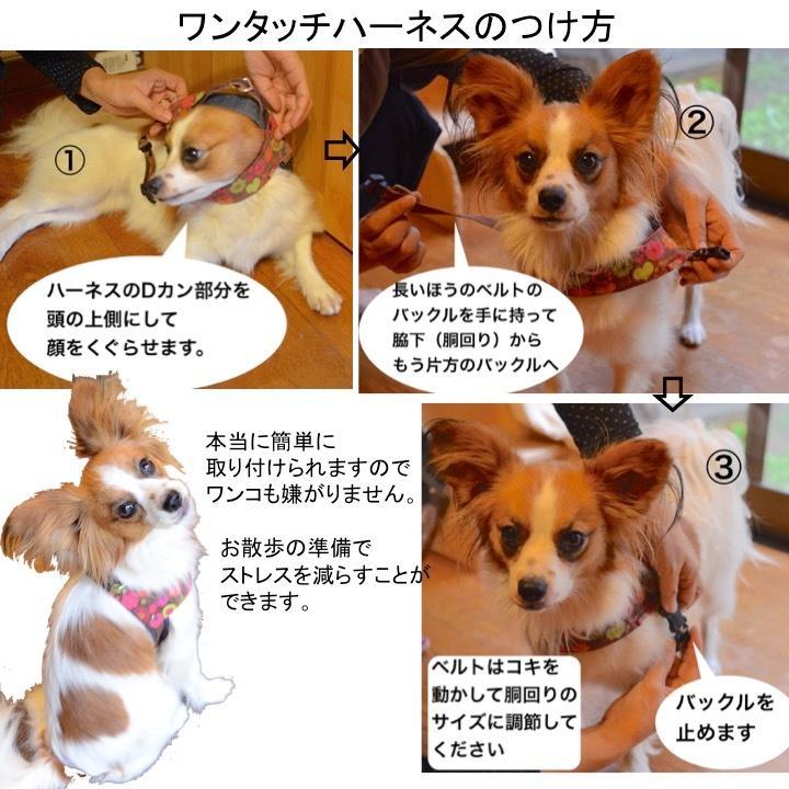 犬用ハーネス ダルメシアンプリント クイックハーネス・胴輪 小型犬用【Sサイズ】 ワンタッチで装着簡単 裏地クッションで優しい。 日本製|groovygroupie|11