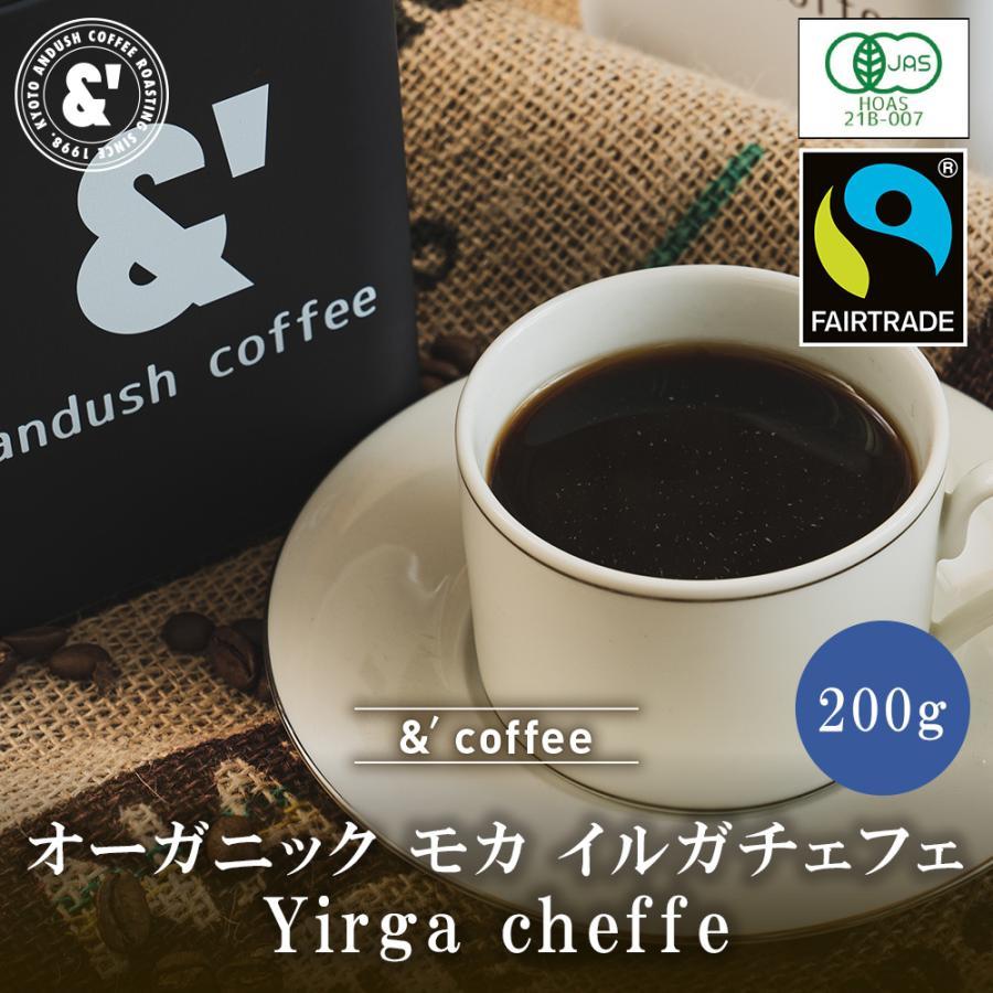 コーヒー豆 送料無料 珈琲豆 おてがるパックmini 有機豆100%使用 モカ イルガチェフェ G2 200g 約20杯分 コーヒー 豆 中煎り|gurumekan