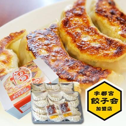 ジャンボ餃子(1箱36個入)|gyoza-gokuu