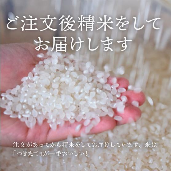プレミア!コシヒカリ! 絶品はちたか米 白米1kg|hachitaka|07