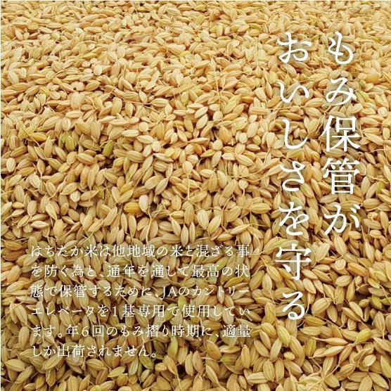 プレミア!コシヒカリ! つやつやモチモチ絶品はちたか米 5kg |hachitaka|06