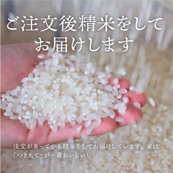 プレミア!コシヒカリ! つやつやモチモチ絶品はちたか米 5kg |hachitaka|07
