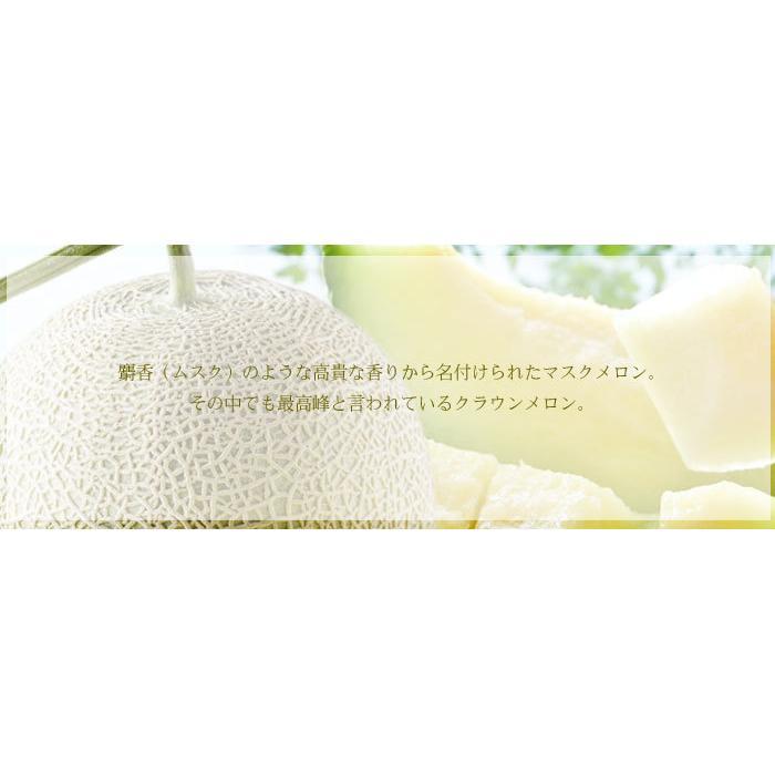 メロン クラウンメロン 白等級 1.2kg 1玉 静岡県産 めろん|hachiya-fruits|03
