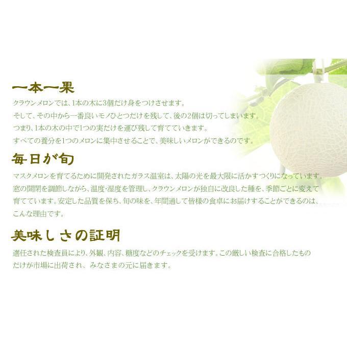 メロン クラウンメロン 白等級 1.2kg 1玉 静岡県産 めろん|hachiya-fruits|04