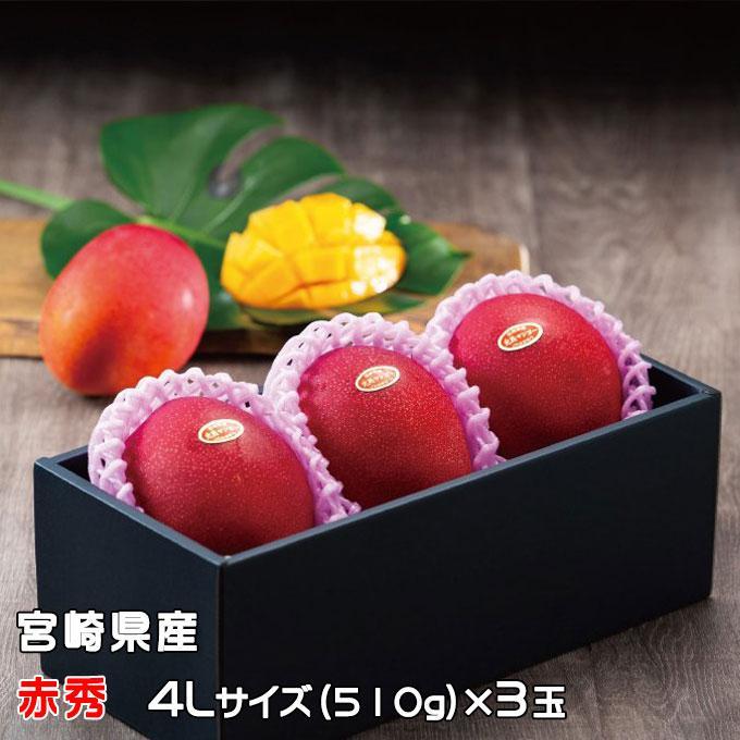 マンゴー みやざき完熟マンゴー 赤秀 4Lサイズ 510g以上×3玉 宮崎県産 JA宮崎経済連 ギフト お取り寄せグルメ 母の日 父の日|hachiya-fruits