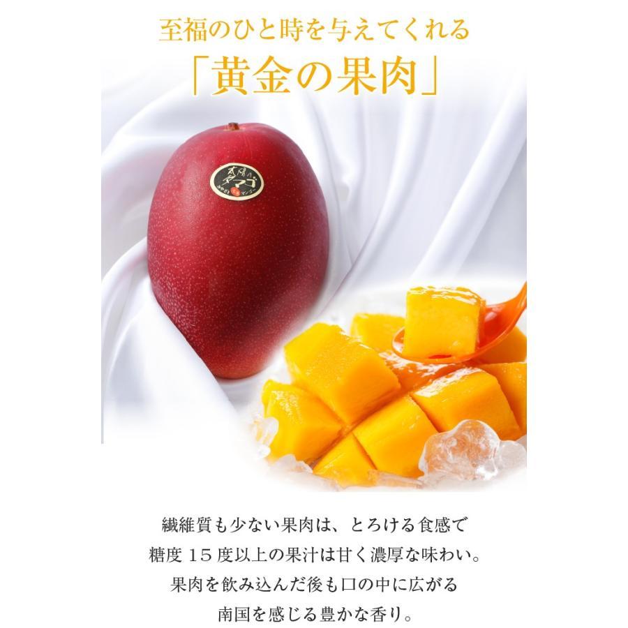 マンゴー 太陽のタマゴ 青秀 3L 450g以上×2玉 JA宮崎経済連 宮崎県産 完熟マンゴー 太陽のたまご ギフト お取り寄せグルメ 母の日 父の日 hachiya-fruits 04