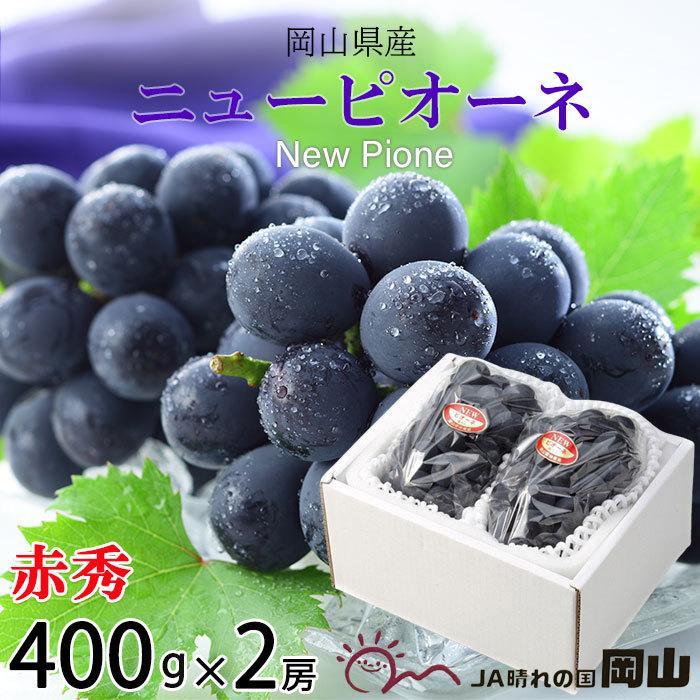 ぶどう ニューピオーネ 赤秀 約400g×2房 岡山県産 JAおかやま 葡萄 ブドウ|hachiya-fruits