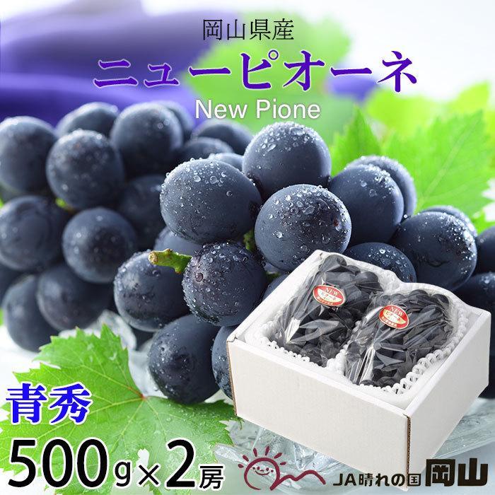 ぶどう ニューピオーネ 青秀 500g×2房 岡山県産 JAおかやま 葡萄 ブドウ|hachiya-fruits