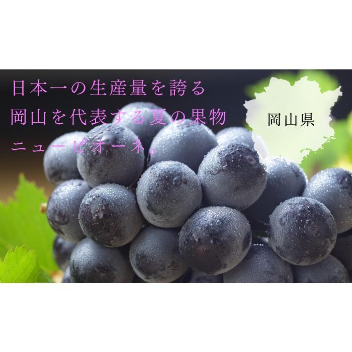 ぶどう ニューピオーネ 青秀 500g×2房 岡山県産 JAおかやま 葡萄 ブドウ|hachiya-fruits|04
