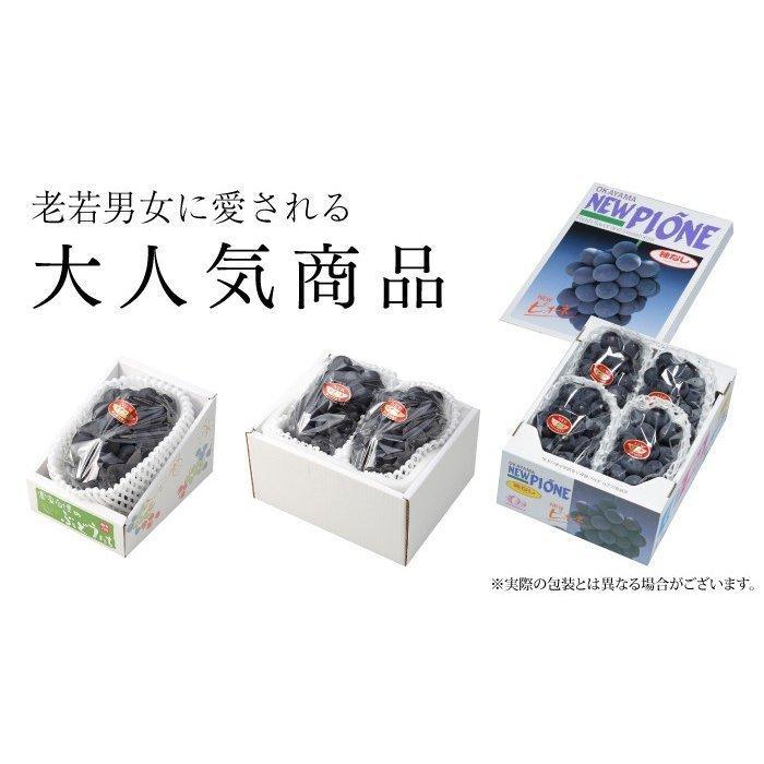 ぶどう ニューピオーネ 優品 500g×2房 岡山県産 JAおかやま 葡萄 ブドウ|hachiya-fruits|05