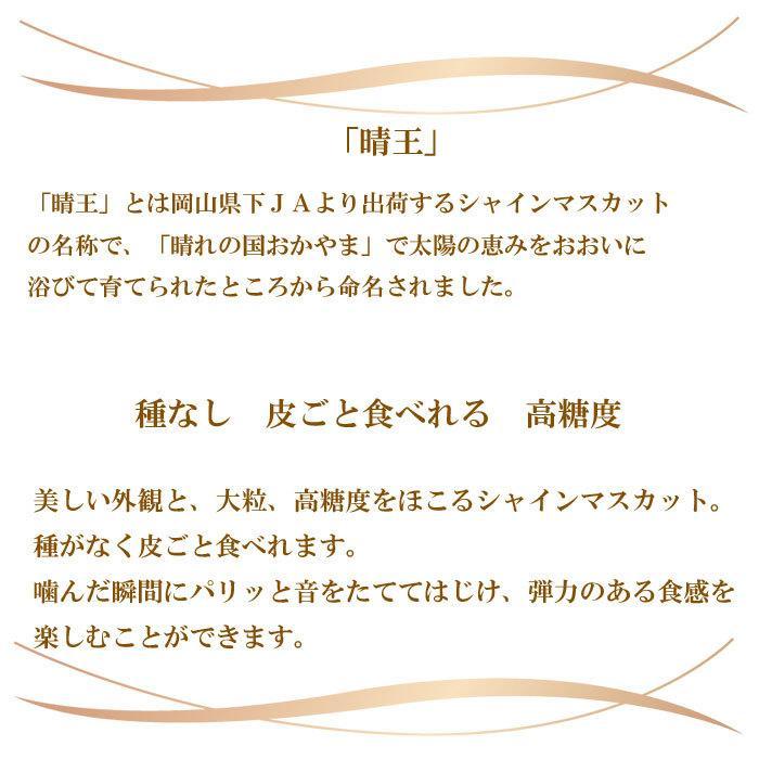 ぶどう シャインマスカット 晴王 風のいたずら ちょっと訳あり 500g×2房 岡山県産 JAおかやま 葡萄 ブドウ hachiya-fruits 05