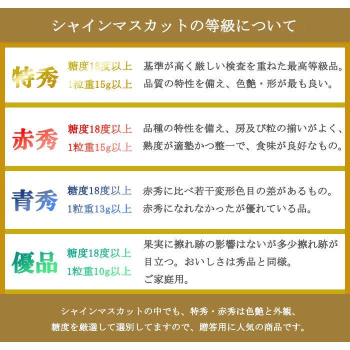 ぶどう シャインマスカット 晴王 風のいたずら ちょっと訳あり 500g×2房 岡山県産 JAおかやま 葡萄 ブドウ hachiya-fruits 07