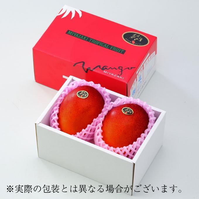 マンゴー 太陽のタマゴ 赤秀 3L 450g以上×2玉 JA宮崎経済連 宮崎県産 完熟マンゴー 太陽のたまご ギフト お取り寄せグルメ 母の日 父の日 hachiya-fruits 02