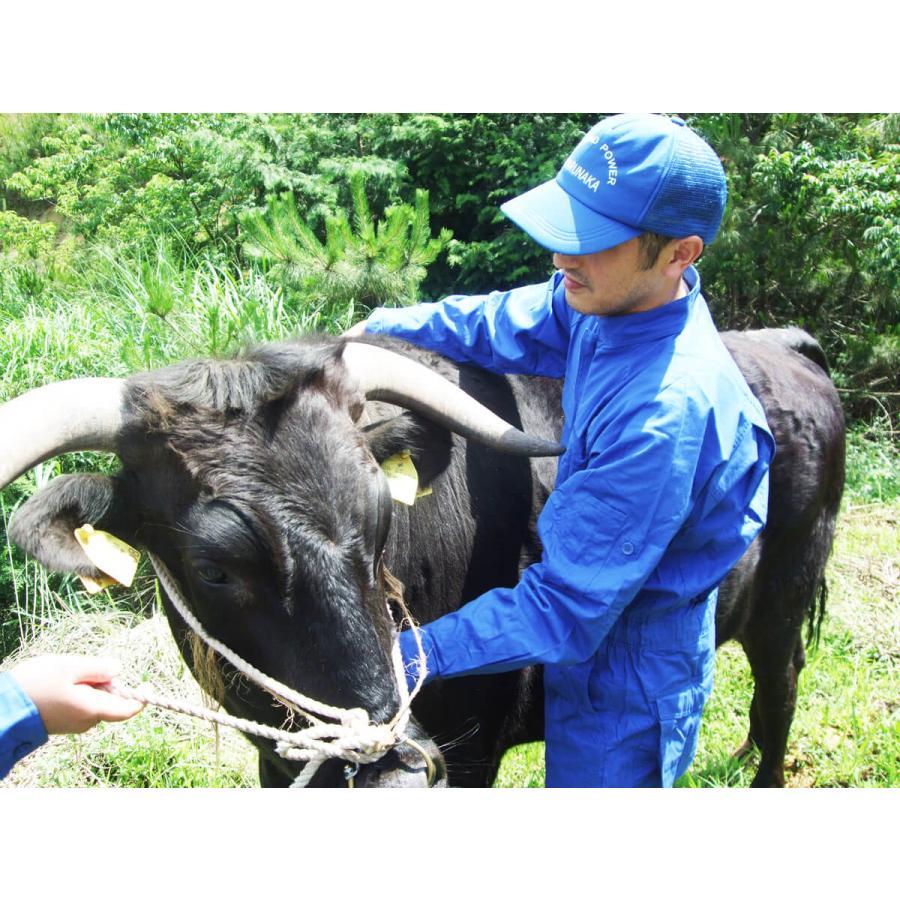萩産「見蘭牛」入りテールスープ2食分|hagi-life|03