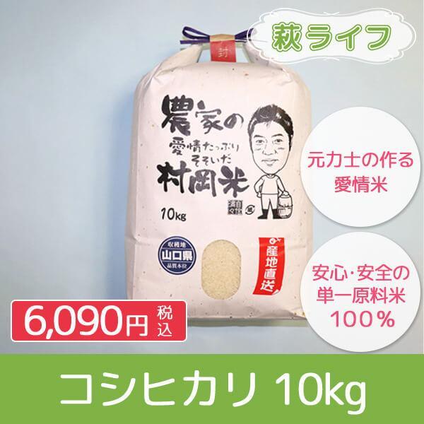 【お米工房村岡】米 コシヒカリ 10kg 精米 白米|hagi-life