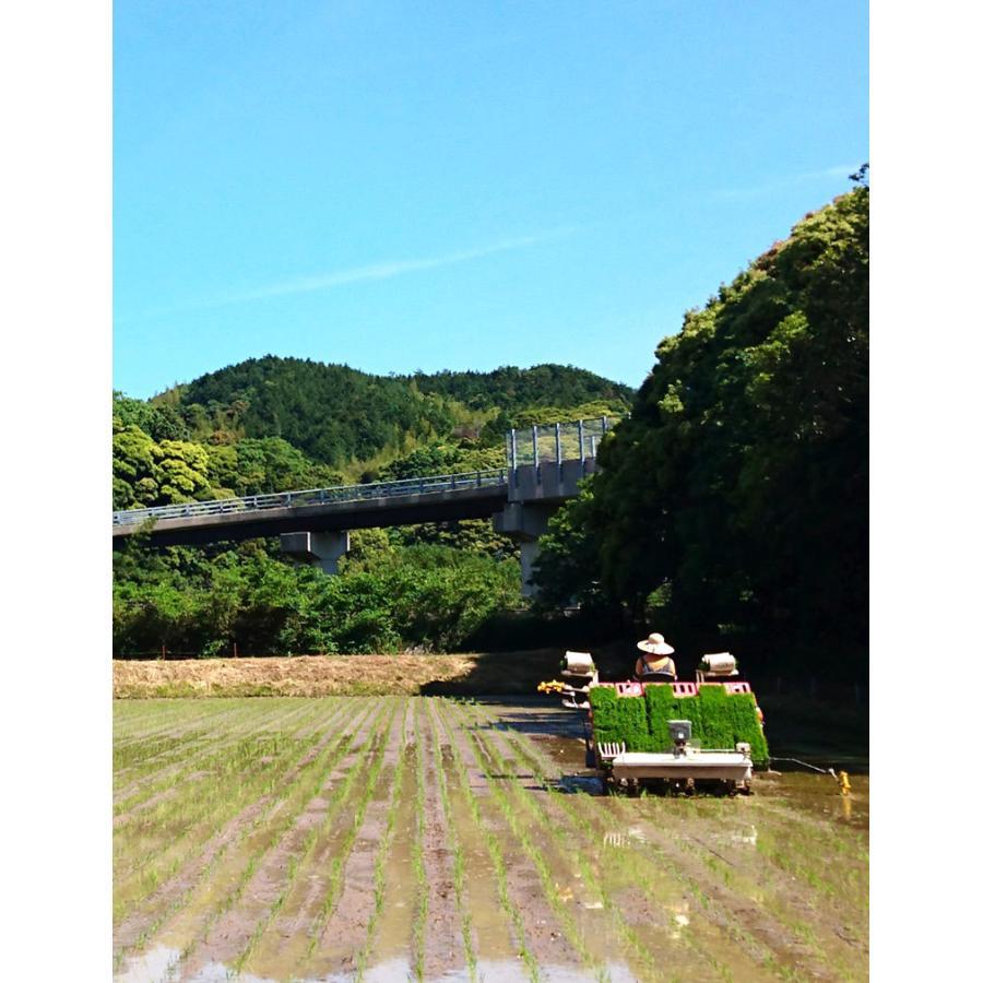 【お米工房村岡】米 コシヒカリ 10kg 精米 白米|hagi-life|08