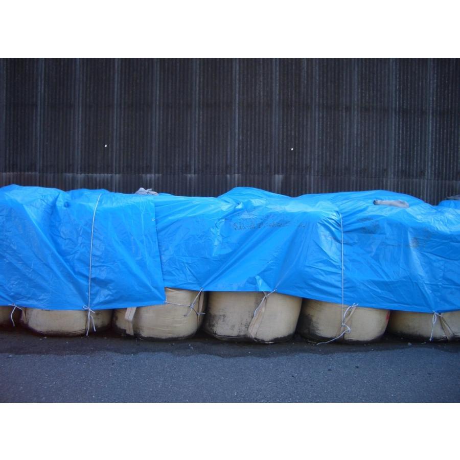 ブルーシート ターピー#3000 3.6mX3.6m|hagihara-e|08