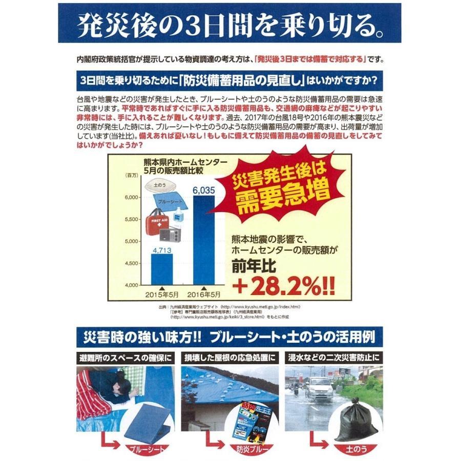 ブルーシート ターピー#3000 4.5mX4.5m hagihara-e 10
