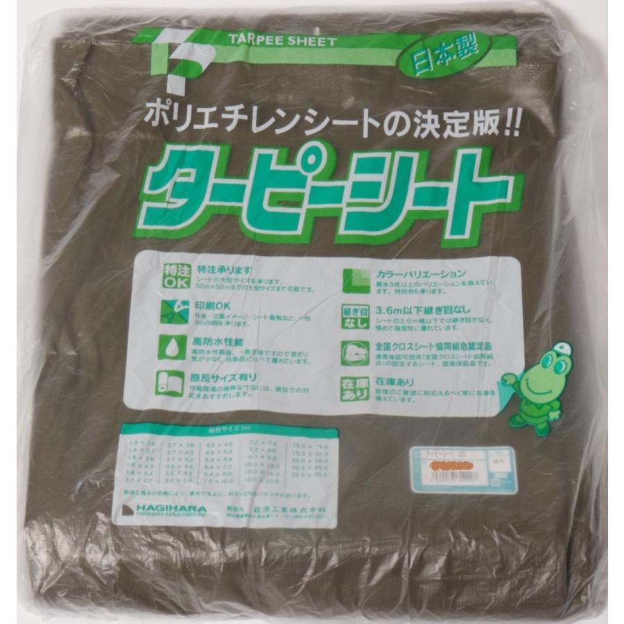 #3000 ODグリーン ターピーシート 3.6mX5.4m hagihara-e 02