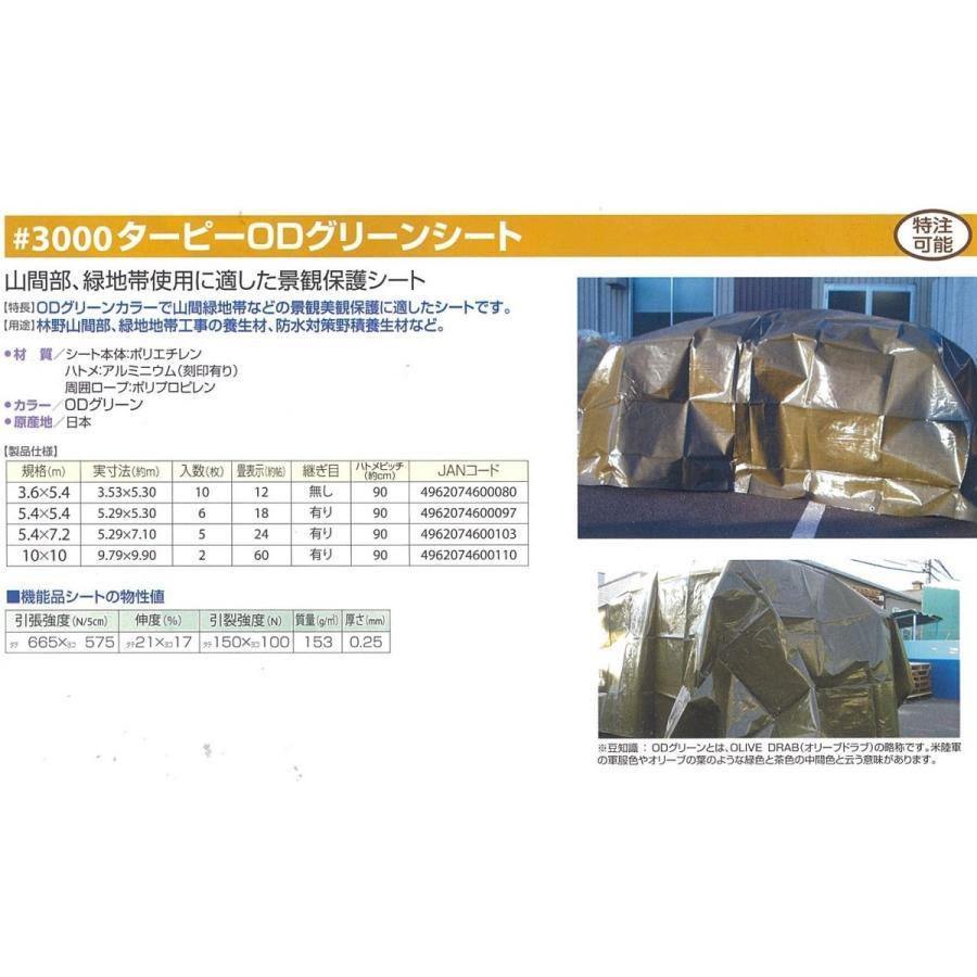 #3000 ODグリーン ターピーシート 3.6mX5.4m hagihara-e 06