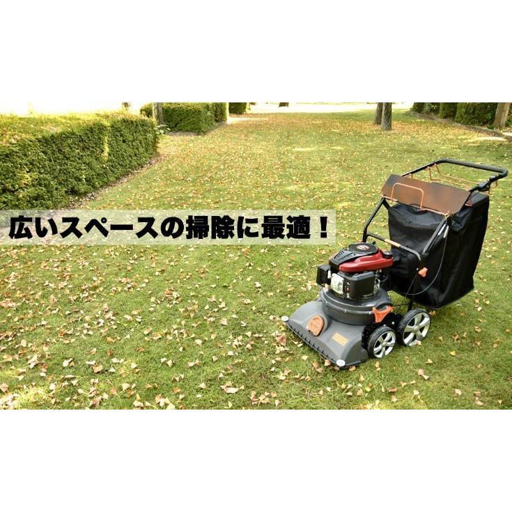 掃除機 落ち葉 自走式 バキューム ブロアー 業務用掃除機 芝生