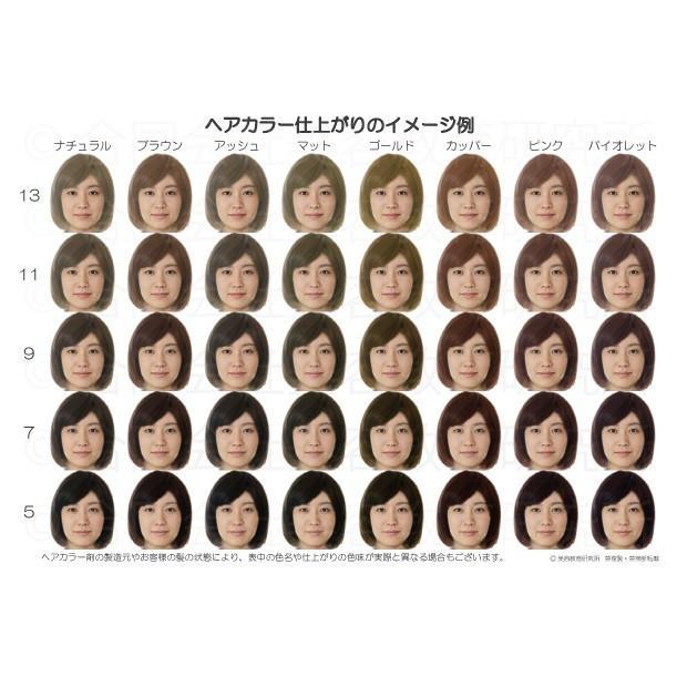 ヘアカラーチャート(平均顔ベース) A5サイズ 髪色見本 似合うヘアカラー 似合う髪色 パーソナルカラー パーソナルヘアカラー ヘアカラーリング hair-color 02