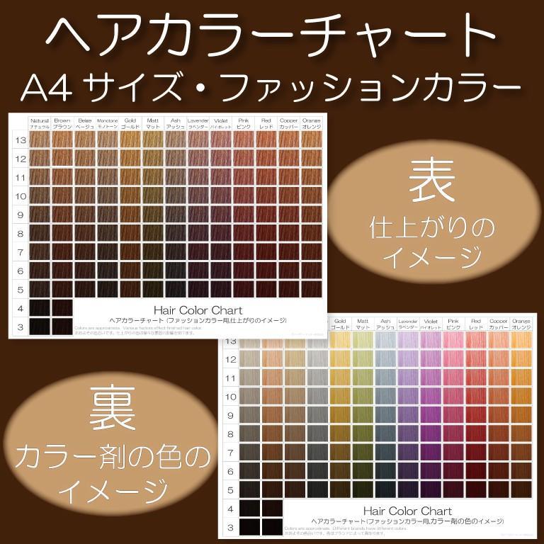 ヘアカラーチャート(ファッションカラー・おしゃれ染め)|A4サイズ両面|表:仕上がりのイメージ|裏:カラー剤の色のイメージ|日本語・英語併記|hair-color