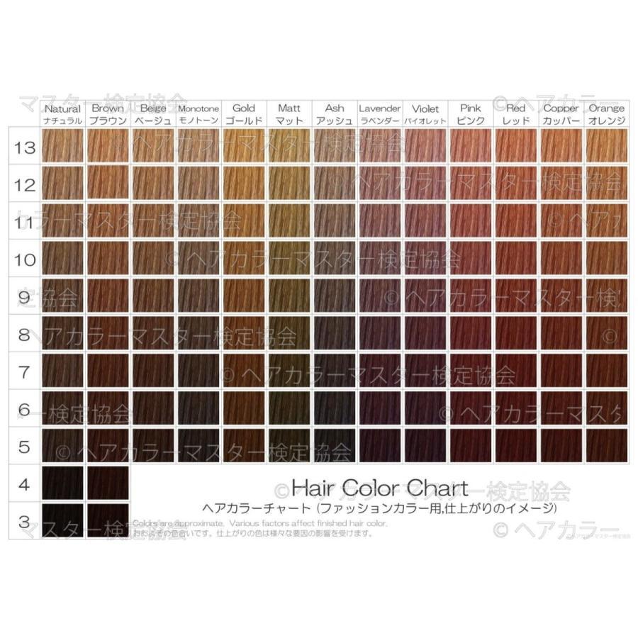 ヘアカラーチャート(ファッションカラー・おしゃれ染め)|A4サイズ両面|表:仕上がりのイメージ|裏:カラー剤の色のイメージ|日本語・英語併記|hair-color|02