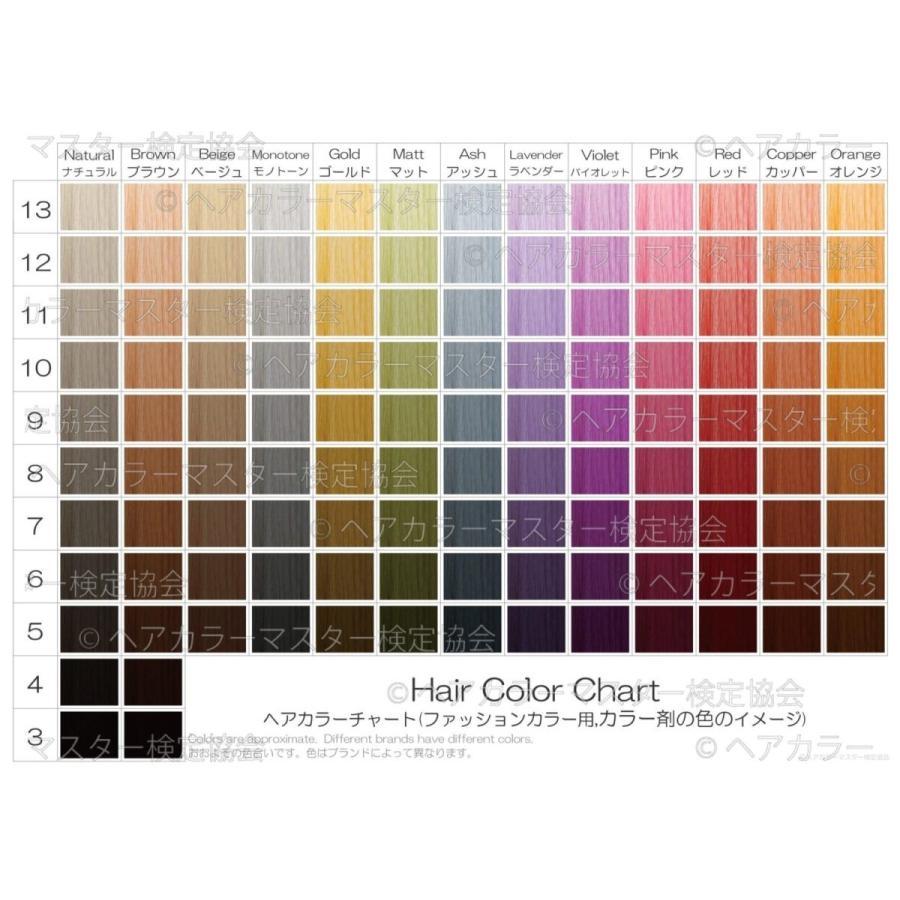 ヘアカラーチャート(ファッションカラー・おしゃれ染め)|A4サイズ両面|表:仕上がりのイメージ|裏:カラー剤の色のイメージ|日本語・英語併記|hair-color|03