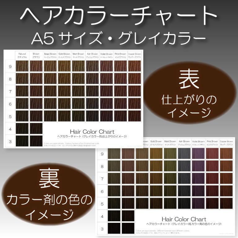 ヘアカラーチャート(グレイカラー・白髪染め)|A5サイズ両面|表:仕上がりのイメージ|裏:カラー剤の色のイメージ|hair-color