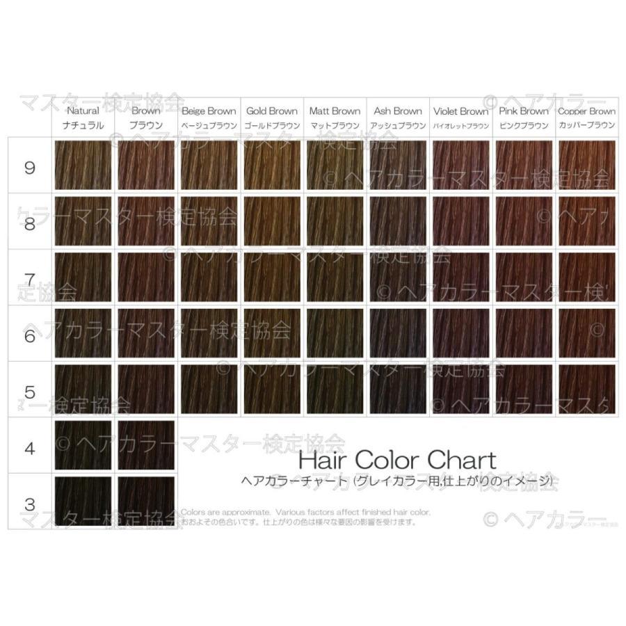 ヘアカラーチャート(グレイカラー・白髪染め)|A5サイズ両面|表:仕上がりのイメージ|裏:カラー剤の色のイメージ|hair-color|02