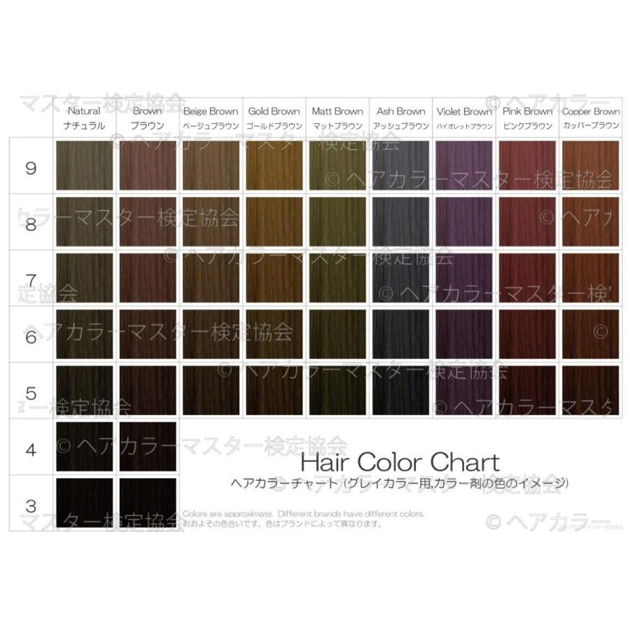 ヘアカラーチャート(グレイカラー・白髪染め)|A5サイズ両面|表:仕上がりのイメージ|裏:カラー剤の色のイメージ|hair-color|03