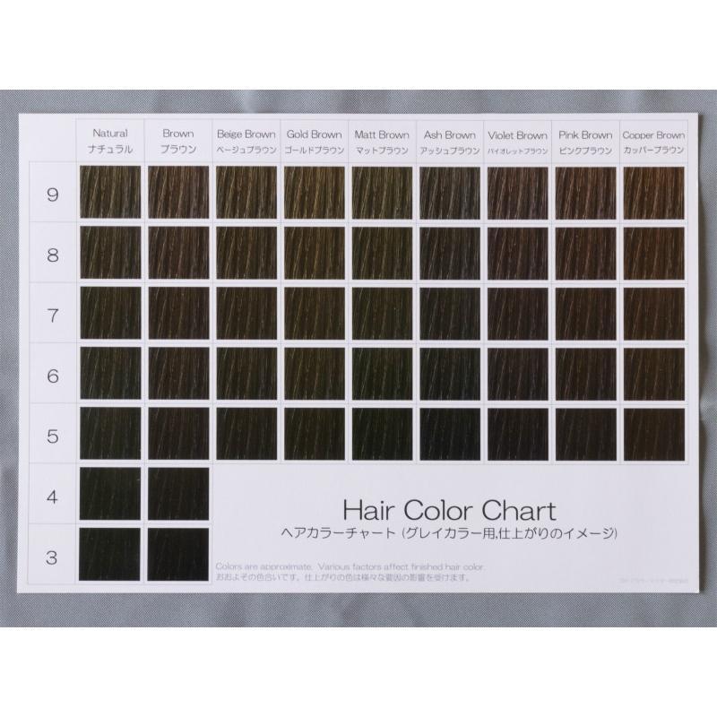 ヘアカラーチャート(グレイカラー・白髪染め)|A5サイズ両面|表:仕上がりのイメージ|裏:カラー剤の色のイメージ|hair-color|04