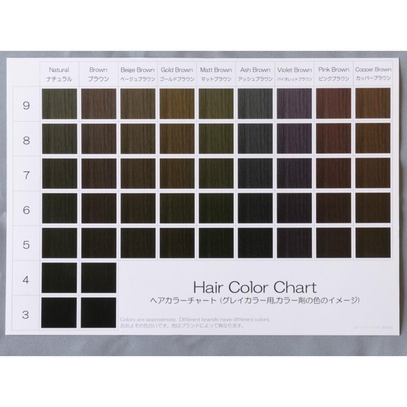ヘアカラーチャート(グレイカラー・白髪染め)|A5サイズ両面|表:仕上がりのイメージ|裏:カラー剤の色のイメージ|hair-color|05