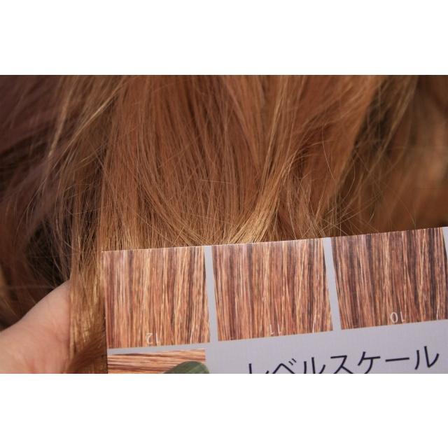 ヘアカラー明度スケール レベルスケール 名刺サイズ両面 3-15レベル 表面:ベーシックブラウン 裏面:ウォームブラウン|hair-color|04
