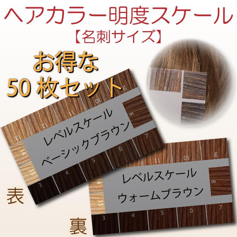 ヘアカラー明度スケール 50枚セット レベルスケール 名刺サイズ両面 3-15レベル 表面:ベーシックブラウン 裏面:ウォームブラウン|hair-color