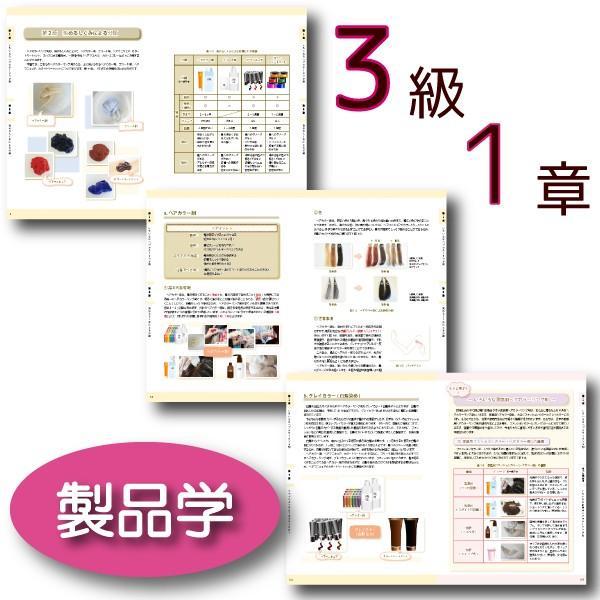 ヘアカラーマスター検定 公式テキスト3級・2級2冊セット ヘアカラーリングの製品学・色彩学・デザイン・心理学・似合わせの教科書 hair-color 03