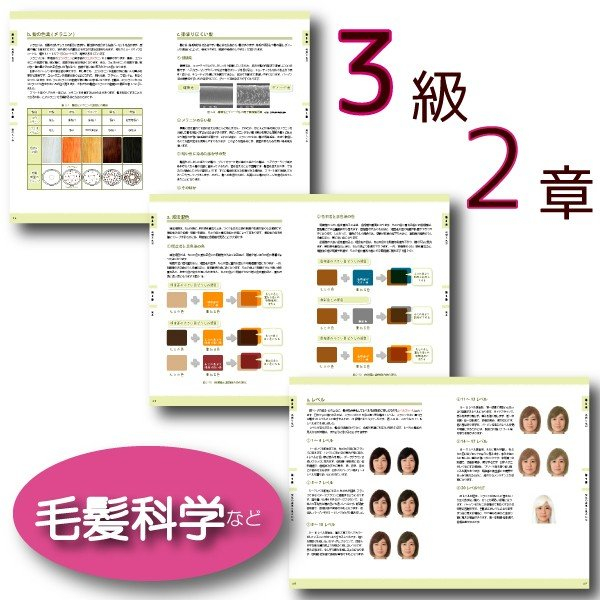 ヘアカラーマスター検定 公式テキスト3級・2級2冊セット ヘアカラーリングの製品学・色彩学・デザイン・心理学・似合わせの教科書 hair-color 04