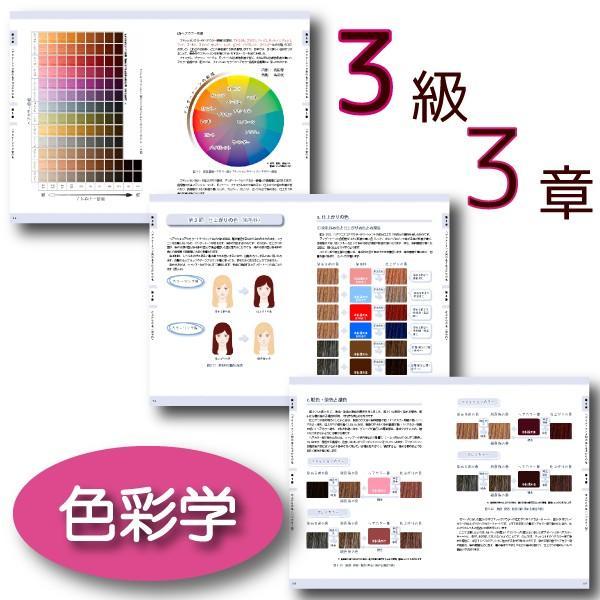 ヘアカラーマスター検定 公式テキスト3級・2級2冊セット ヘアカラーリングの製品学・色彩学・デザイン・心理学・似合わせの教科書 hair-color 05