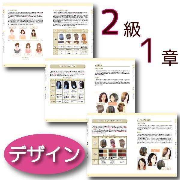 ヘアカラーマスター検定 公式テキスト3級・2級2冊セット ヘアカラーリングの製品学・色彩学・デザイン・心理学・似合わせの教科書 hair-color 08