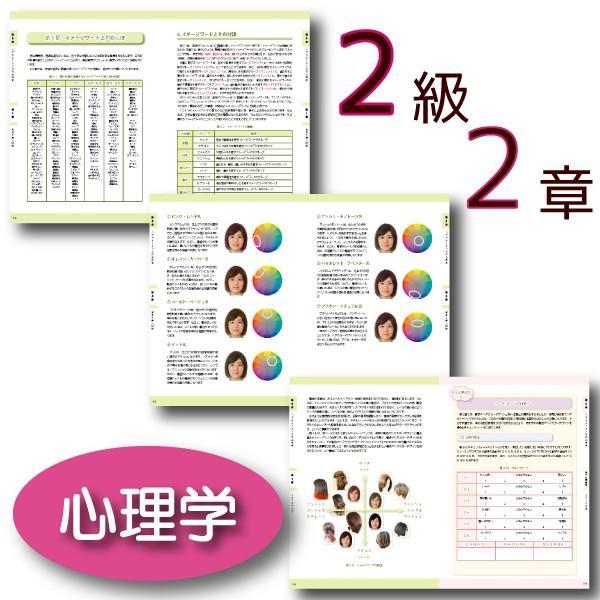 ヘアカラーマスター検定 公式テキスト3級・2級2冊セット ヘアカラーリングの製品学・色彩学・デザイン・心理学・似合わせの教科書 hair-color 09