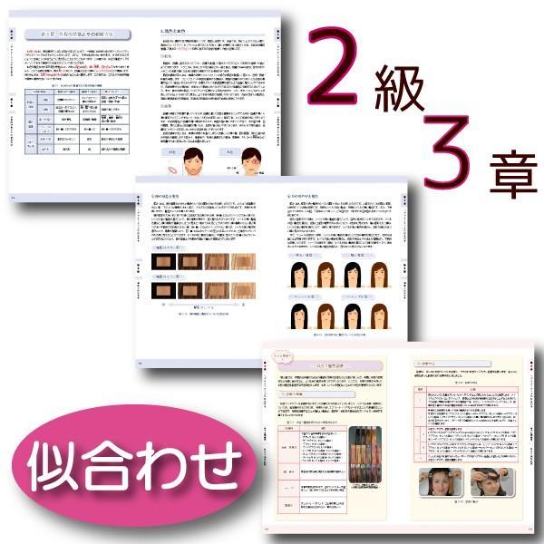 ヘアカラーマスター検定 公式テキスト3級・2級2冊セット ヘアカラーリングの製品学・色彩学・デザイン・心理学・似合わせの教科書 hair-color 10