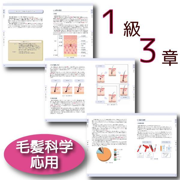 ヘアカラーマスター検定1級公式テキスト|ヘアカラーリングの香粧品科学・色彩学・毛髪科学の教科書|hair-color|05